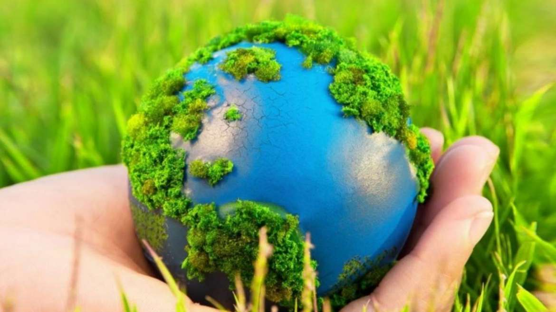 Turkey will create environmental organizations abroad