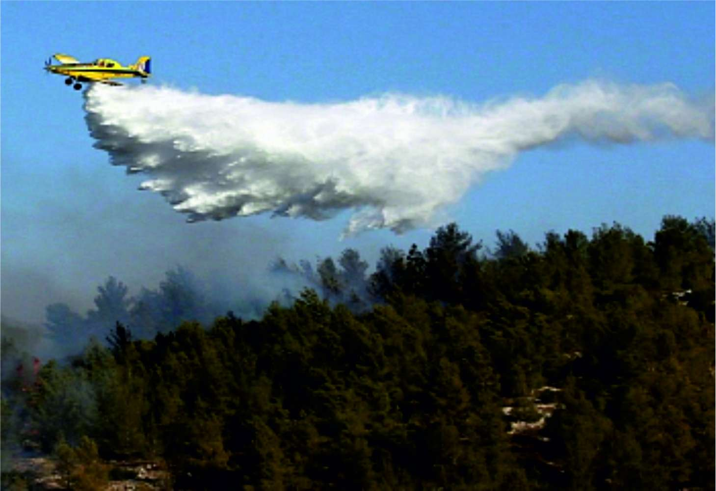 Turkey defeated wildfires
